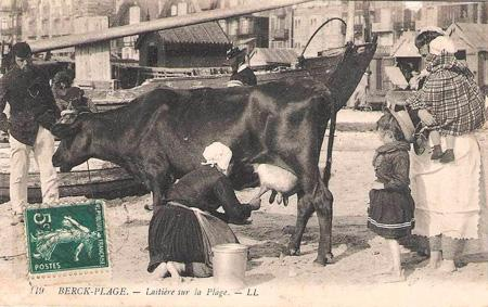 berck-laitiere-et-sa-vache-sur-la-plage.jpg