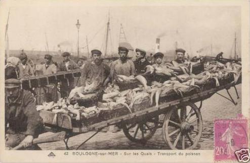 boulogne-transport-du-poisson-herve-tavernier-calais.jpg
