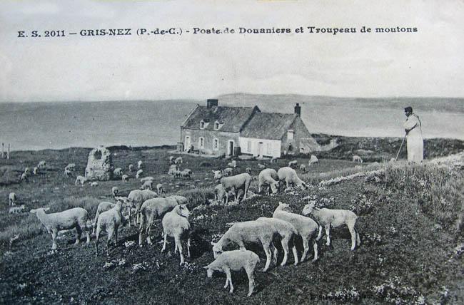 cap-gris-nez-le-poste-de-douaniers-et-le-troupeau-de-moutons-herve-tavernier-calais-1.jpg