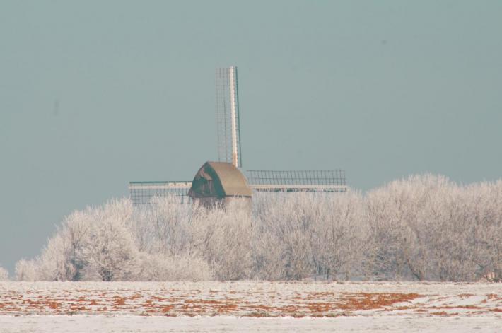 coquelles-le-moulin-sous-la-neige-herve-tavernier-calais.jpg