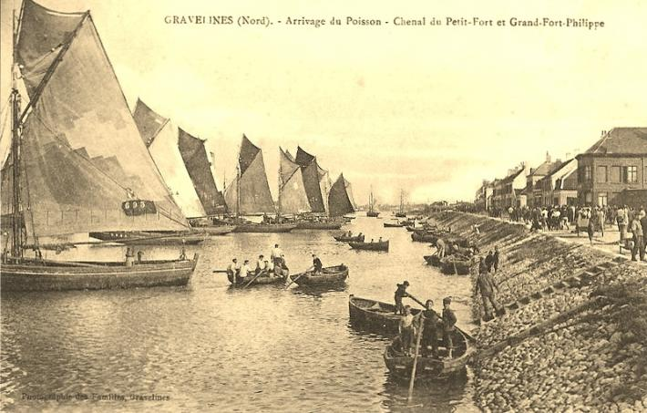 grand-fort-philippe-arrivage-du-poisson.jpg