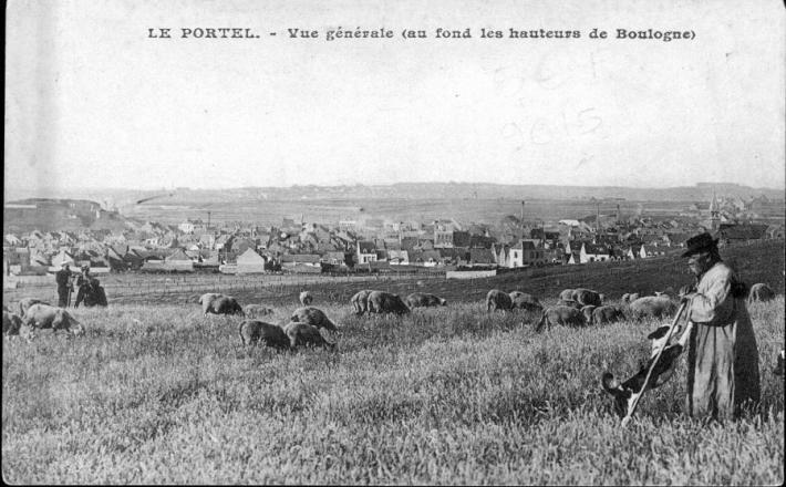 le-portel-vue-generale-herve-tavernier-calais-berger-et-ses-moutons.jpg