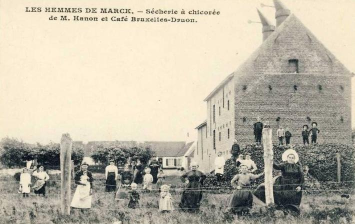 marck-les-hemmes-secherie-a-chicoree-et-cafe.jpg
